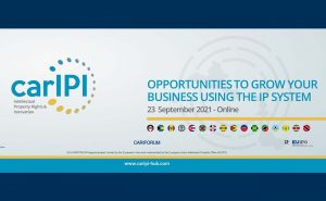 Opportunities to grow your business using the IP system @ ZOOM