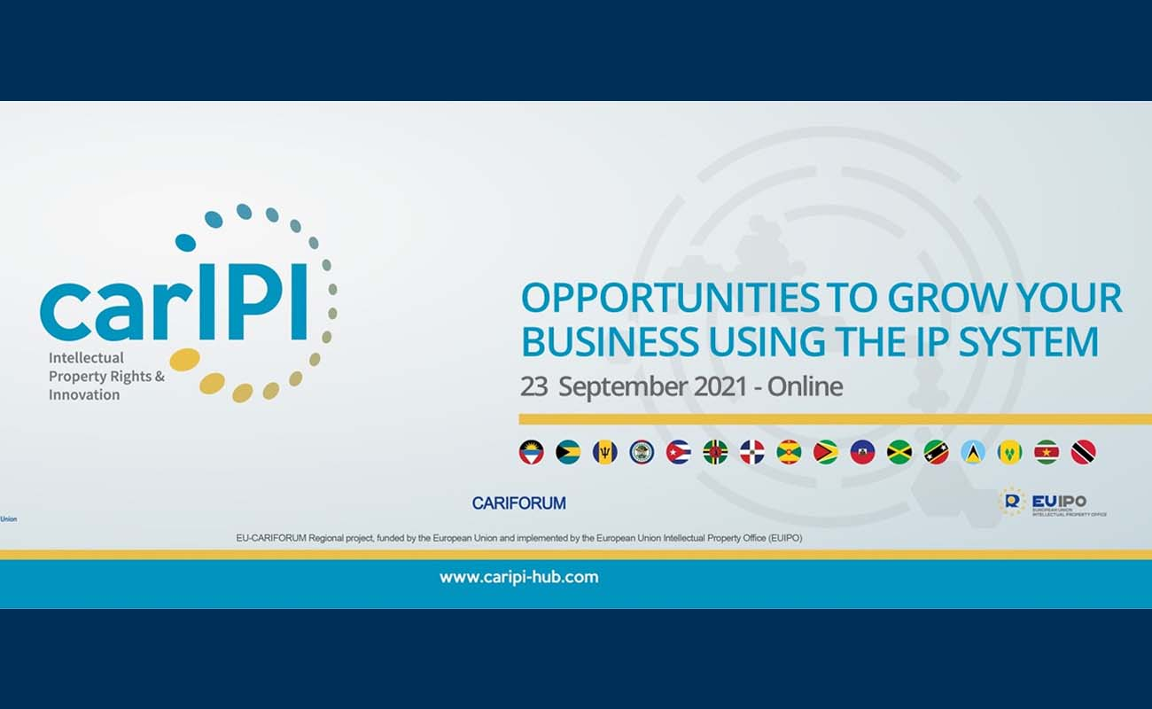 Opportunities to grow your business using the IP system